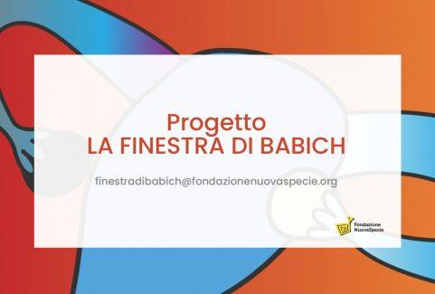 Progetto LA FINESTRA DI BABICH