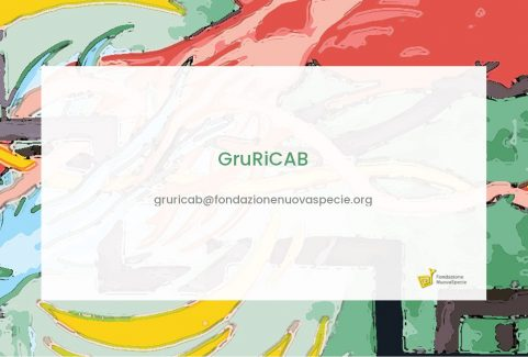 GRURICAB